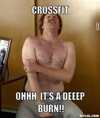 Insanity Workout Meme - survived my first crossfit class barely