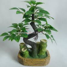 bonsai tree bonsai tree suppliers and manufacturers at alibaba
