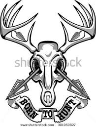 whitetail buck skull stock images royalty free images u0026 vectors