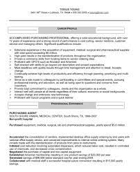 resume headline examples best template collection