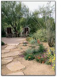 Desert Backyard Landscape Ideas Best 25 Desert Landscaping Backyard Ideas On Pinterest Desert
