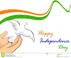 Condor Flags Charlotte Nc Indian National Flag Kp Rajan Pinterest National Flag