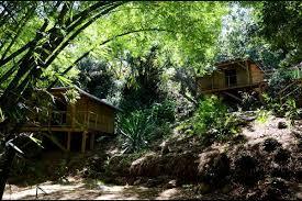 chambre d hote louis des cabanes sur une île chambre feuille de bambou cabane sur