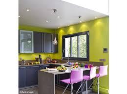 cuisine vert anis cuisine vert anis et prune en photo