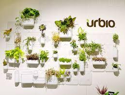 transform walls to indoor gardens with versatile urbio system