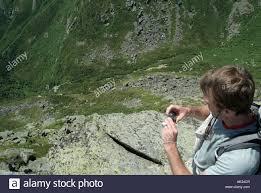 mount washington tuckerman ravine from lions trail during