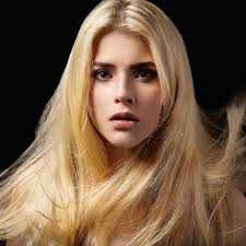 24 In Human Hair Extensions by Straight Clip In Hair Extensions Color 24 Natural Blonde