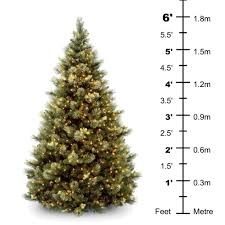 trees walmart ft tree target6 with