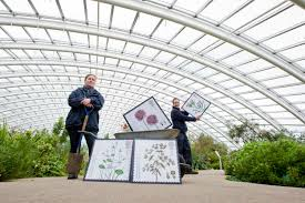 National Botanic Garden Wales Corporate Hire National Botanic Garden Of Wales