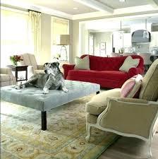 best sofa fabric for dogs best sofa fabric for dogs best furniture fabric for cats surprising