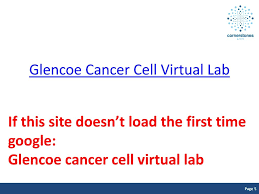 glencoe virtual light lab objective warm up what are the 6 stages of mitosis ppt download