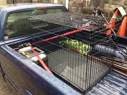 Truck Bed Dog Kennel Photos Rides In Dog Cage In Truck Bed