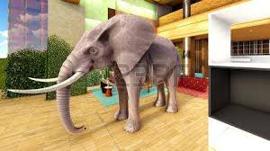 elephant in the living room elephant in the living room stock photo picture and royalty free