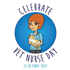 nurses day balloons how will you spoil your veterinary nurses on vet day 2017