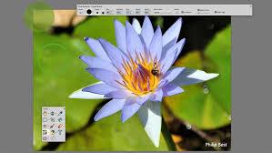 the ultimate photo editor u2013 paintshop pro 2018 ultimate