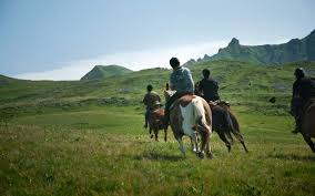 equestrian activities and tourism in france including horse riding
