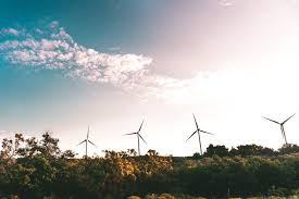 Seeking Houston Houston Company Seeks To Breathe Into Wind Power