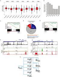 super enhancers delineate disease associated regulatory nodes in t