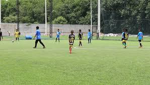 Football Field In Backyard Twin Boys On A Swing In Backyard Stock Footage Video 463564