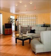 furniture amazing open room dividers home divider design bedroom