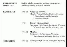 What Does A Resume Look Like For A First Job by Download How Does A Resume Look Like Haadyaooverbayresort Com