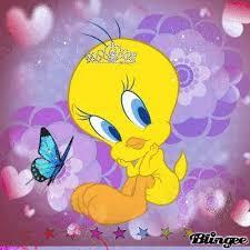 cute tweety bird tweet panthers