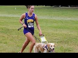 How Does A Guide Dog Help A Blind Person Legally Blind Runner And Her Guide Dog Youtube