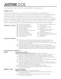 Summary Of Skills Resume Sample Professional Senior Solutions Architect Templates To Showcase Your