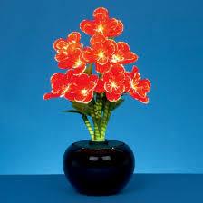 begonia flower fibre optic begonia flower arrangement
