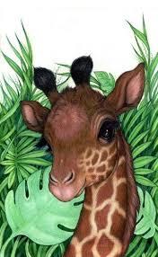 imagenes de jirafas bebes animadas para colorear imagenes de jirafas bebes para dibujar imagenes de la naturaleza