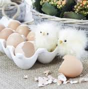 ceramic egg tray 12 ceramic egg tray kitchen buy online from fishpond au