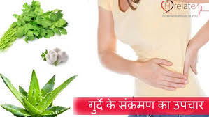 kidney infection treatment in hindi sankraman ka ilaj hrelate