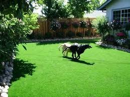 Garden Ideas For Dogs Great Backyard Landscaping Ideas Awesome Backyard Garden Cool