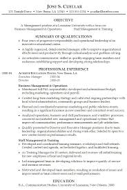 summary example for resume executive summary resume example