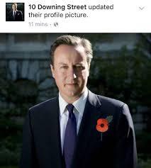 David Cameron Memes - david cameron poppy memes unleased on twitter after fake poppy