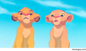 The Lion King Meme - mrw i hear they are remaking the lion king meme guy