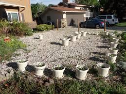 low maintenance landscaping ideas landscaping ideas low