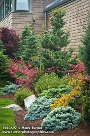 50 ideas to make evergreen landscape garden on your front yard