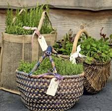 best 20 herb planters ideas on pinterest growing herbs herb garden ideas for small spaces