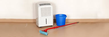 best dehumidifiers for basements consumer reports