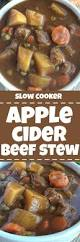 slow cooker apple cider beef stew together as family