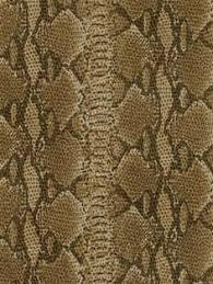 colorful snake skin wallpaper tera wallpaper inspiration