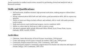 resume examples resumes wonderful professional skills for resume