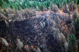 Card Wildfire Alaska by Aerial Photos Show Wildfire Losses In Columbia River Gorge