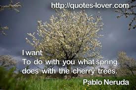 i want to do with you what does with the cherry trees