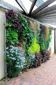 wall garden ideas indoor creative living wall vertical wall garden