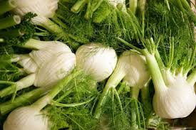 cuisiner du fenouil frais cuisiner du fenouil frais 19 images recette de huitres chaudes