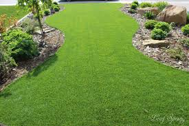 spring landscaping synthetic lawns by leaf spring landscaping edmonton