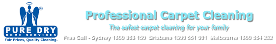 How Long Does Wet Carpet Take To Dry How Long Do Carpets Take To Dry After Carpet Cleaning Puredry
