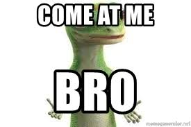 Come At Me Bro Meme Generator - come at me bro the geico gecko meme generator